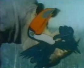 Les Animaux du Monde - Animaux du Monde (les) - 1987