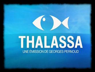 emission thalassa