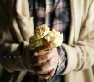 Carnation - Ending Song - Carnation