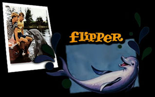 Flipper - Main title season 2 - Flipper le dauphin - Générique saison 2