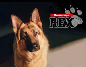 Kommissar Rex - Main title - Rex, chien flic - Générique