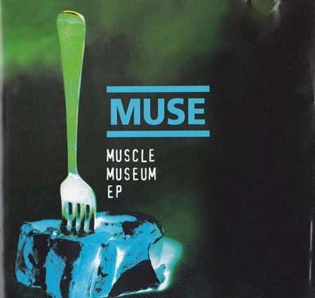 - Muscle museum